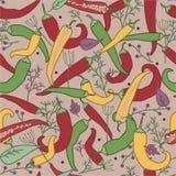 Σχέδιο πιπεριών και καρυκευμάτων Στοκ εικόνα με δικαίωμα ελεύθερης χρήσης
