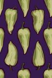 Σχέδιο πιπεριών Απεικόνιση αποθεμάτων