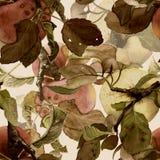 Σχέδιο που αποτελείται άνευ ραφής από τα μήλα Στοκ εικόνα με δικαίωμα ελεύθερης χρήσης