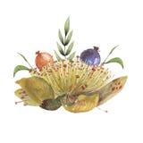 Σχέδιο πρόσκλησης Watercolor με την ανθοδέσμη των λουλουδιών, χρωματισμένες χέρι floral συνθέσεις που απομονώνονται στο άσπρο υπό διανυσματική απεικόνιση