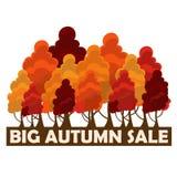 Σχέδιο πώλησης πτώσης Μεγάλη πώληση φθινοπώρου Διανυσματική απεικόνιση με τα ζωηρόχρωμα δέντρα φθινοπώρου Στοκ εικόνα με δικαίωμα ελεύθερης χρήσης