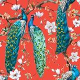 Σχέδιο ράστερ Watercolor peacock διανυσματική απεικόνιση