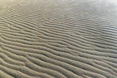 Σχέδιο στους αμμόλοφους άμμου Στοκ Εικόνες
