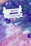 Σχέδιο συνόρων Χριστουγέννων με τα χιονισμένα pinecones Στοκ Εικόνες