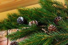Σχέδιο συνόρων Χριστουγέννων με τα χιονισμένα pinecones Στοκ φωτογραφία με δικαίωμα ελεύθερης χρήσης