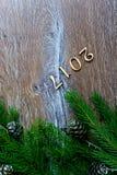 Σχέδιο συνόρων Χριστουγέννων με τα χιονισμένα pinecones Στοκ Φωτογραφίες