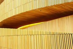 Σχέδιο της Όπερας Στοκ εικόνες με δικαίωμα ελεύθερης χρήσης