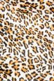 Σχέδιο τιγρών Στοκ Εικόνα