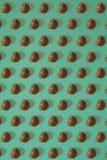 Σχέδιο του ακτινίδιου Τοπ άποψη του τεμαχισμένου ακτινίδιου στο μπλε υπόβαθρο Το ελάχιστο επίπεδο βάζει την έννοια Στοκ φωτογραφία με δικαίωμα ελεύθερης χρήσης