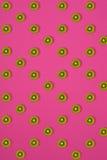 Σχέδιο του ακτινίδιου Τοπ άποψη του τεμαχισμένου ακτινίδιου στο ρόδινο υπόβαθρο Το ελάχιστο επίπεδο βάζει την έννοια Στοκ εικόνες με δικαίωμα ελεύθερης χρήσης