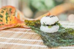 Σχέδιο τροφίμων σφαιρών ρυζιού Στοκ φωτογραφίες με δικαίωμα ελεύθερης χρήσης