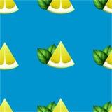Σχέδιο των φετών και της μέντας λεμονιών σε ένα μπλε υπόβαθρο Στοκ φωτογραφίες με δικαίωμα ελεύθερης χρήσης