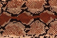Σχέδιο υποβάθρου snakeskin Στοκ εικόνα με δικαίωμα ελεύθερης χρήσης