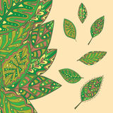 Σχέδιο φύλλων στις σκιές πράσινου Στοκ Φωτογραφία