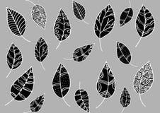 Σχέδιο φύλλων στο ύφος doodle Στοκ Φωτογραφία