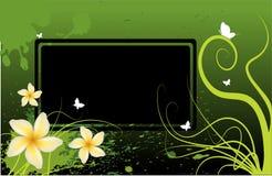 σχέδιο floral Στοκ Φωτογραφία
