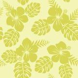 Σχέδιο Ropical με τα φύλλα και hibiscus Monstera Στοκ Εικόνες