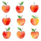 Σχέδιο watercolor της Apple Στοκ Εικόνες