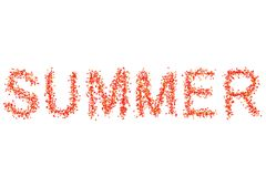 Σχεδίου χλωρίδας κόκκινο κίτρινο καλοκαίρι κειμένων φύλλων σφενδάμου φωτεινό juicy σε μια άσπρη φωτογραφία λευκωμάτων καρτών βάσε απεικόνιση αποθεμάτων