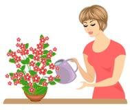 Σχεδιάγραμμα ενός όμορφου κοριτσιού Η κυρία φροντίζει για τα χρώματα του δωματίου Η γυναίκα τους έχυσε r ελεύθερη απεικόνιση δικαιώματος