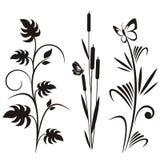σχεδιάστε τη floral ιαπωνική σειρά ελεύθερη απεικόνιση δικαιώματος