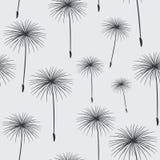 Σχεδίων ο άνευ ραφής σύστασης Μαύρος πικραλίδων υποβάθρου χνουδωτός σε GR Στοκ εικόνες με δικαίωμα ελεύθερης χρήσης