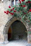 Σχηματισμένη αψίδα μετάβαση σε Marienburg Castle στοκ φωτογραφίες
