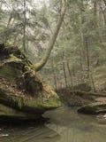 Σχηματισμοί βράχου με τη βλάστηση και τα δέντρα Στοκ φωτογραφία με δικαίωμα ελεύθερης χρήσης