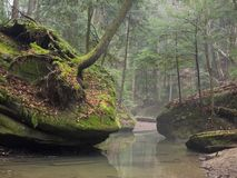 Σχηματισμοί βράχου με τη βλάστηση και τα δέντρα Στοκ εικόνα με δικαίωμα ελεύθερης χρήσης
