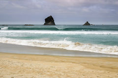 Σχηματισμοί βράχου στον κόλπο φλεβοτόμων, χερσόνησος Otago, Νέα Ζηλανδία Στοκ Εικόνες