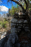 Σχηματισμοί βράχου Tsingy σε Ankarana, αγριότητα της Μαδαγασκάρης Στοκ φωτογραφίες με δικαίωμα ελεύθερης χρήσης