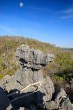 Σχηματισμοί βράχου Tsingy σε Ankarana, Μαδαγασκάρη Στοκ φωτογραφία με δικαίωμα ελεύθερης χρήσης
