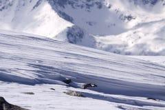 Σχηματισμοί χιονιού Στοκ φωτογραφίες με δικαίωμα ελεύθερης χρήσης