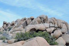 Σχηματισμός βράχου στο δέντρο του Joshua στοκ εικόνα