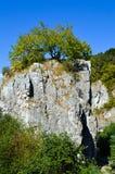 Σχηματισμός βράχου Hrebenac Στοκ εικόνα με δικαίωμα ελεύθερης χρήσης