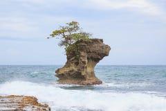 Σχηματισμός βράχου Manzanillo Κόστα Ρίκα Στοκ Εικόνες