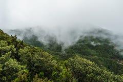 Σχηματισμός ομίχλης και σύννεφων κατά μήκος των TF-134 Tenerife Στοκ Φωτογραφίες