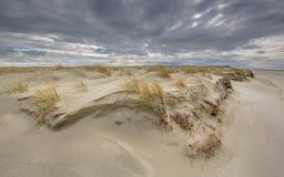 Σχηματισμός του νέου αμμόλοφου στοκ εικόνες με δικαίωμα ελεύθερης χρήσης