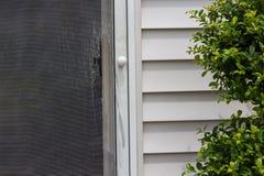 Σχισμένο και χαλασμένο πλέγμα καλωδίων σε μια πόρτα οθόνης Στοκ Φωτογραφίες