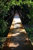 σχοινί γεφυρών Στοκ εικόνα με δικαίωμα ελεύθερης χρήσης