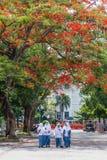 Σχολείο girsl μέσα σόλο, Indosia Στοκ Εικόνες