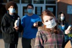 σχολικοί χοίροι γρίπης Στοκ Φωτογραφία