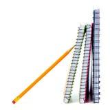 Σχολικά σημειωματάρια στοκ φωτογραφία