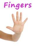 Σχολική κάρτα του στενών επάνω χεριού και των δάχτυλων νέων κοριτσιών στο άσπρο υπόβαθρο Στοκ Εικόνες