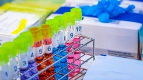 Σωλήνας γυαλιού δοκιμής πειράματος στο εργαστήριο στοκ φωτογραφία με δικαίωμα ελεύθερης χρήσης