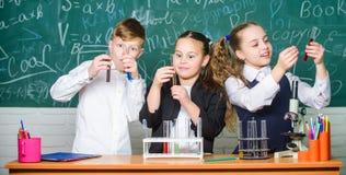 Σωλήνες δοκιμής με τις ζωηρόχρωμες υγρές ουσίες Μελέτη των υγρών καταστάσεων Οι σχολικοί μαθητές ομάδας μελετούν τα χημικά υγρά Κ στοκ εικόνα με δικαίωμα ελεύθερης χρήσης