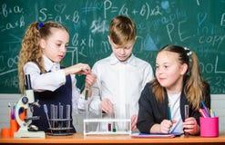 Σωλήνες δοκιμής με τις ουσίες Βασική εκπαίδευση Σχολικό πείραμα συμπεριφοράς σπουδαστών κοριτσιών και αγοριών με τα υγρά o στοκ φωτογραφίες με δικαίωμα ελεύθερης χρήσης