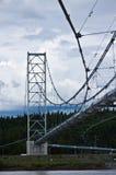 σωλήνωση της Αλάσκας δι&alph Στοκ φωτογραφία με δικαίωμα ελεύθερης χρήσης