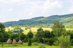 Σωροί και γεωργικοί τομείς Στοκ φωτογραφία με δικαίωμα ελεύθερης χρήσης