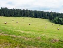 Σωροί σανού που διασκορπίζονται πέρα από το πράσινο λιβάδι χλόης Στοκ Φωτογραφία